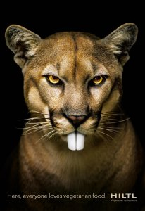 hiltl-panther.thumb.jpg.00a09dfd308c8d5ccd36bb69ac48d41b.jpg